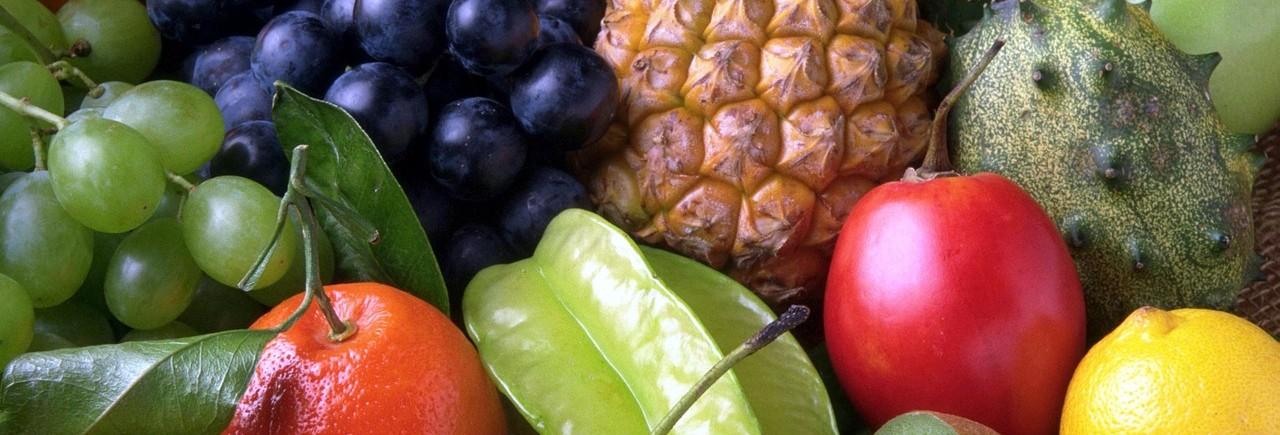 fruit attraction ifema madrid